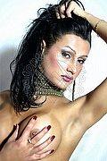 Transex Pisa Fabiana Alves 388.3483423 foto hot 1