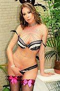 Transex Milano Roberta Lima 333.4933924 foto hot 1